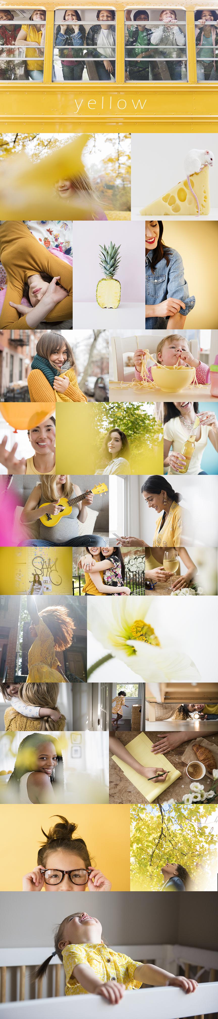 JGP colorblocking gallery yellow