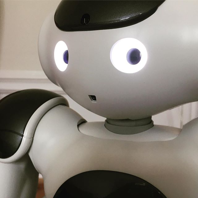 """It's good to be back in business again. Being in nature with all these living bugs can really disturb my perception. I definitely prefer software bugs because they can be fixed. We have some fun projects planned for the next few weeks so excited to get started"" #nao #markusnao #softbankrobotics #naorobot"