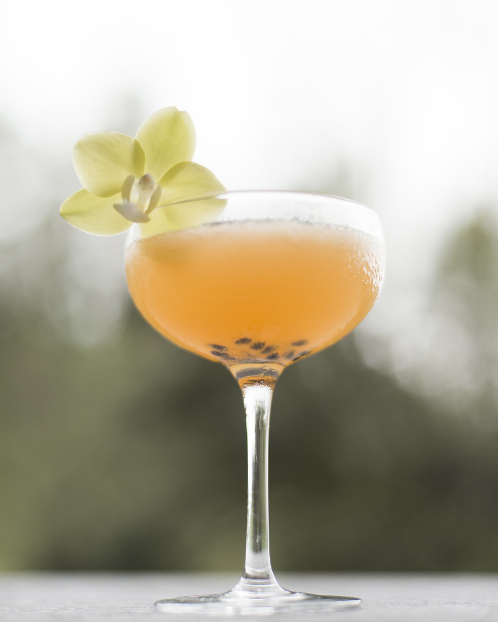 PASSION LOVE    lilikoi, fresh pressed lime, house cranberry syrup, vodka