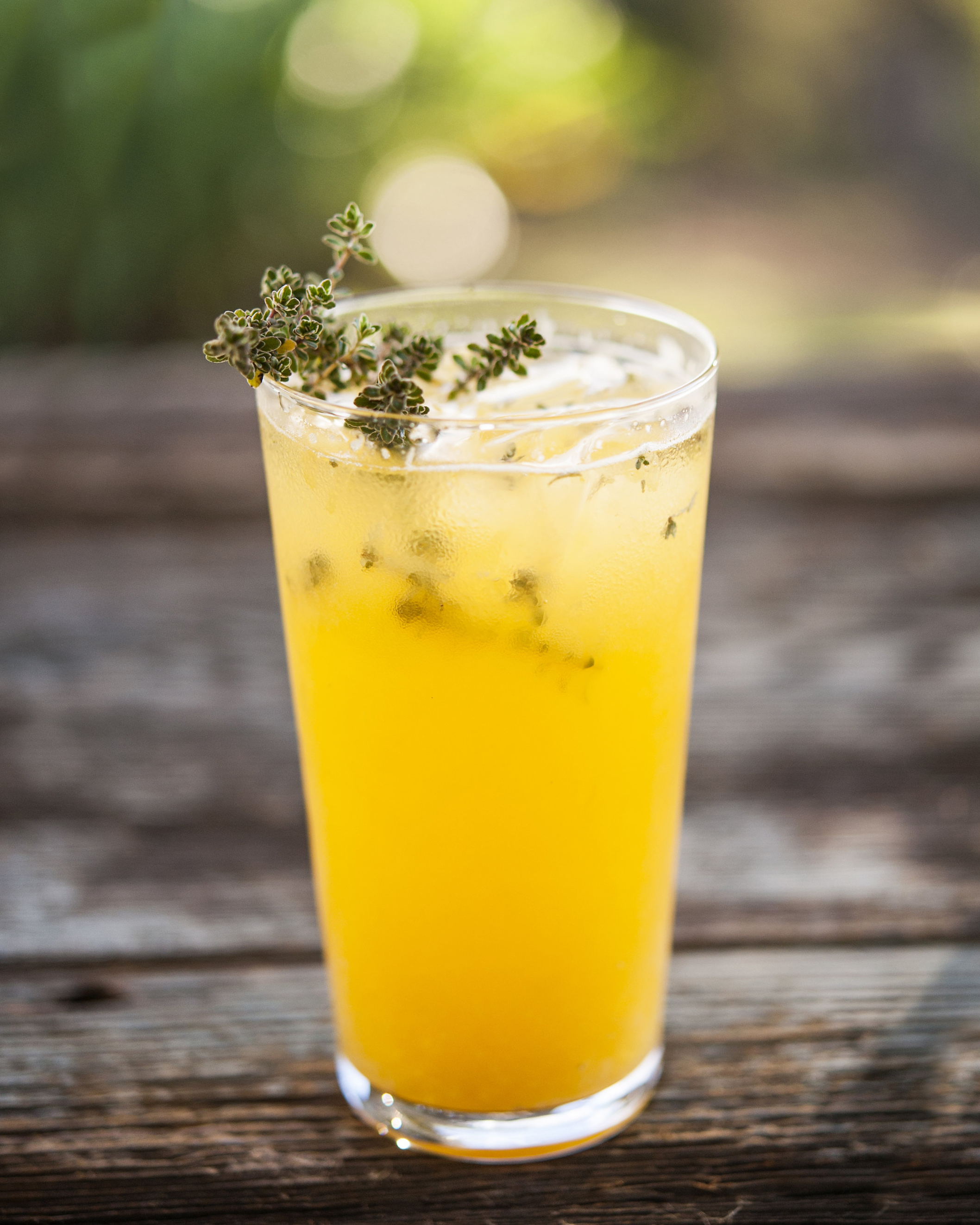 WINTER THYME   fresh pressed tangerine and lemon, house thyme syrup, lehua honey, gin