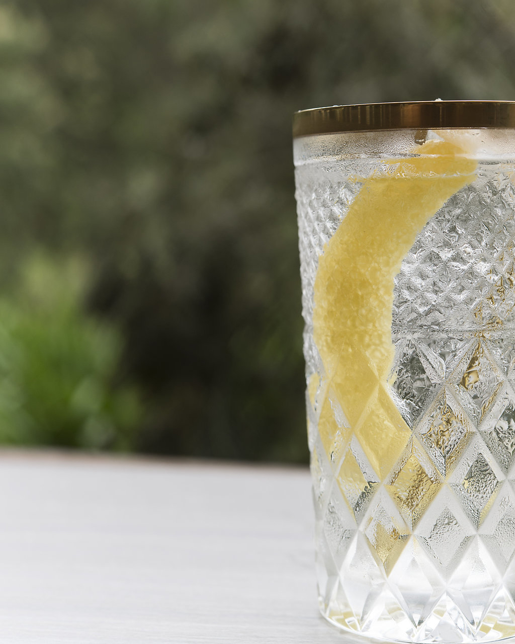 GINGER & TONIC   tonic syrup, lemon bitters, ginger-infused gin, charged water