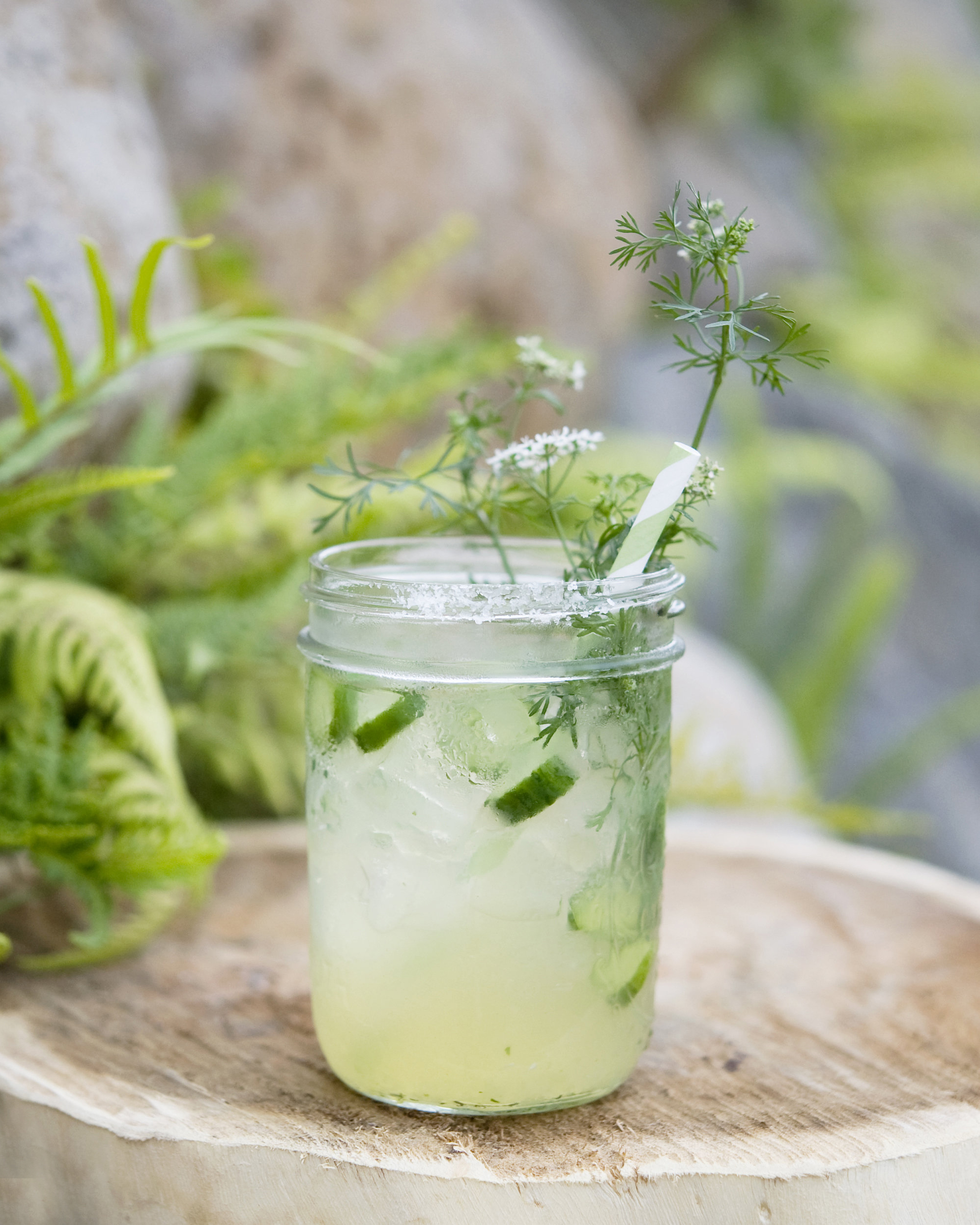 BAREFOOT IN THE GARDEN   fresh pressed lime, cucumber, cilantro, St. Germaine, reposado tequila