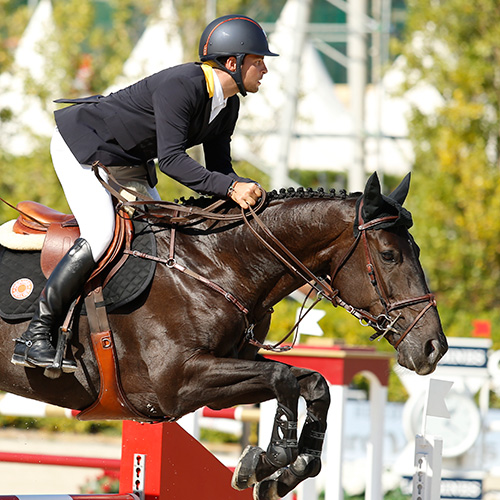Believe   Mare, KWPN, 2006, Ukato x Larista (by Burggraaf)  Owners: Blue Star Investments and Alberto Simhon