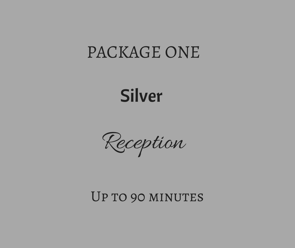 Silver (2).png