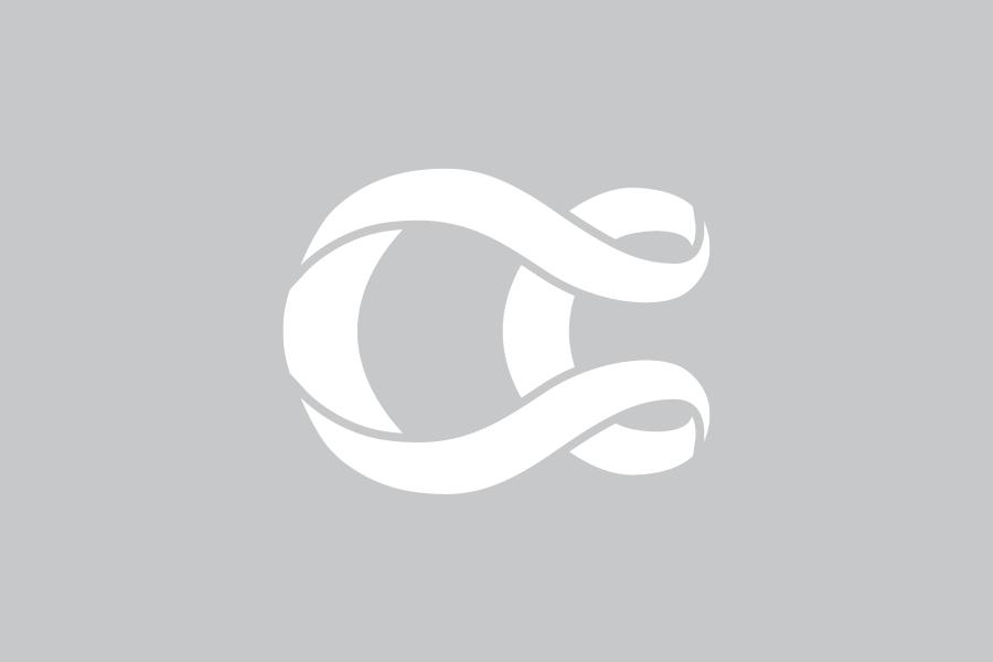 White Slice Icon