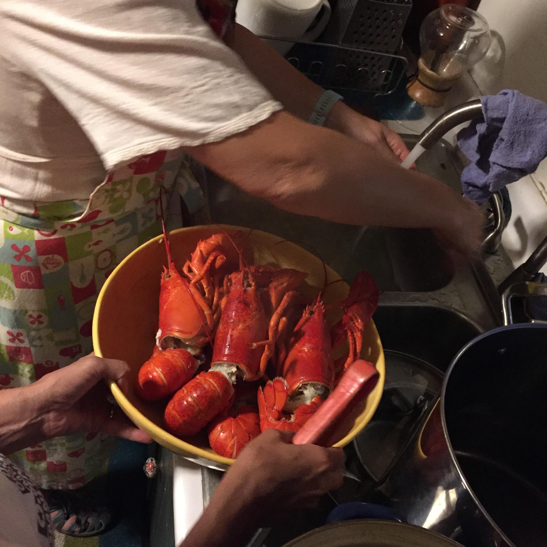 Maine lobsters.jpg
