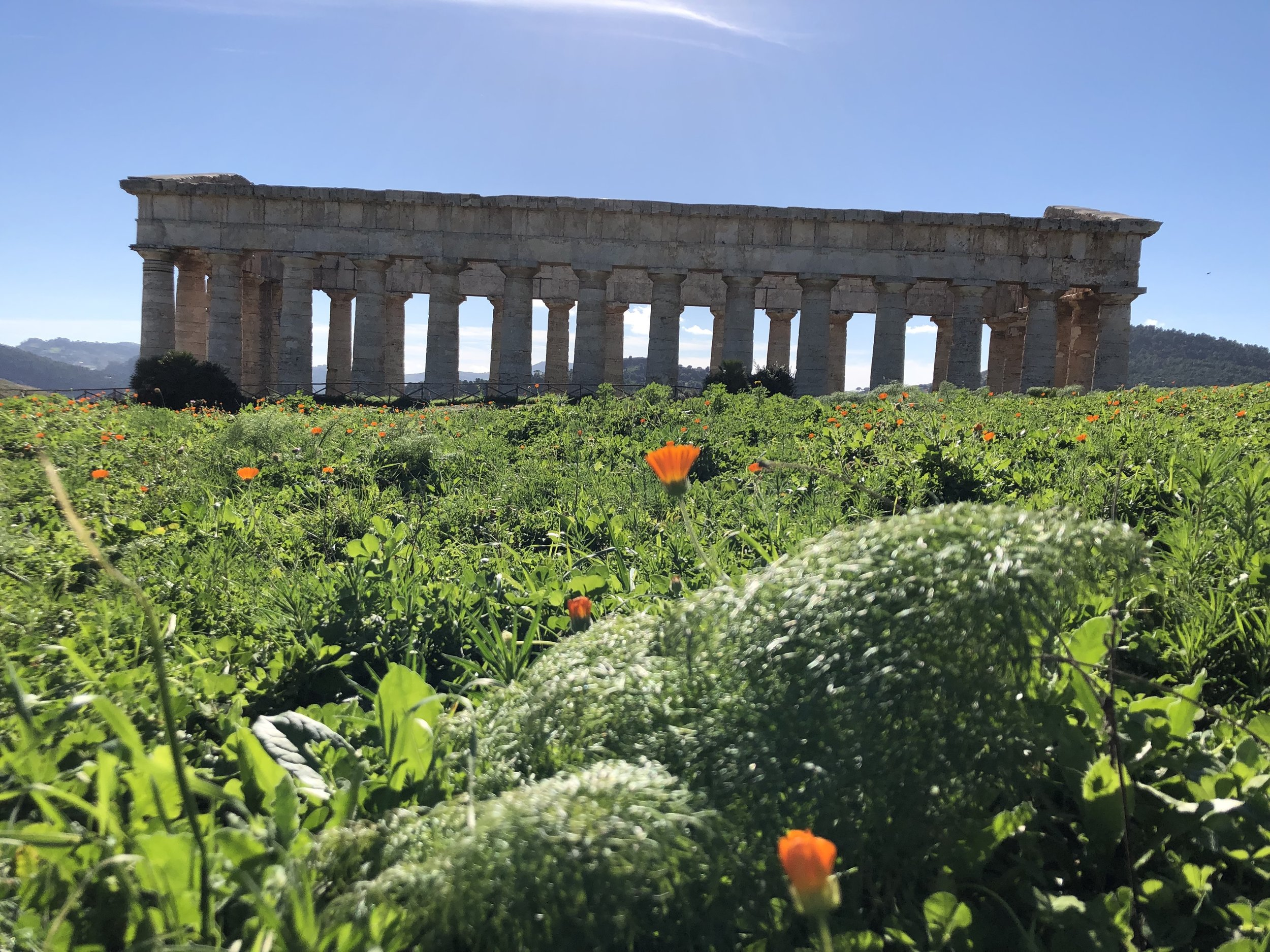 - DETAILS COMING SOON!SICILY WRITING INTENSIVE: WRITE LIKE A MOTHER Generative Writing Retreat for Fiction, Creative Nonfiction & Mixed GenreNovember 2020DATES TO BE ANNOUNCED IN FALL 2019Led by Kate Moses, with Guest Faculty Susan Straight & Reiko Rizzuto