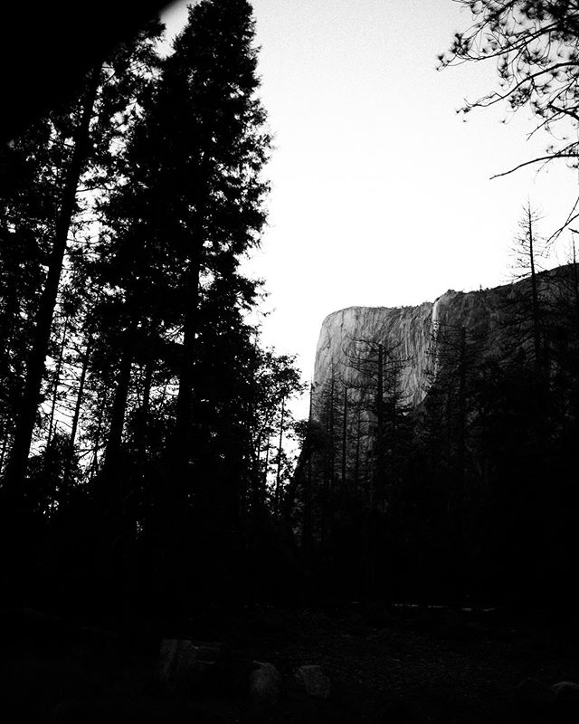 Slowly but surely posting our Yosemite photos. This is the last photo I took driving out of the valley. I still cannot get over the scale of El Cap and the rest of these walls. 🌲  Prior to this, we had done 14 miles that day. We got up at 5AM from our camp in Little Yosemite Valley, hiked freakin Half Dome (the cables were as intense as they say— esp. coming down), went back to camp to pack up, hiked back down into the valley, almost cussed out some tourists for going off trail and blocking the trail with their selfie-taking antics, ate a $45 frozen pizza, drank 4 beers (I did), then decided to drive to Nevada (Zac driving, not me) since we were heading back the next day. Oh boy. That was THE MOST TIRED I have been (maybe ever). We drove through the night on the windyest California highways — no food or civilization in site. When we finally got to Tahoe, we got McDonald's (haven't had McDonald's since I was a teenager). We found a Hard Rock hotel to stay in for $65. I had a mental/emotional breakdown in the lobby because people were smoking and loud and I was just so tired. By the time we got to our room, the floodgates had opened. I sat in the corner on a chair, put the Quarter Pounder box on my lap and sat their sobbing and eating my burger. I was completely irrational and probably incoherent and I just wanted to be asleep. 🌲  We ended up knocking off a good 5-6 hours of our drive the next day, which was worth it! It took me a while to admit that, and to apologize to Zac for my completely toddler-like behavior. But, the moral of this story is that, @zac_haigh , you are a saint.  And also that traveling with the one you love is the best. Overall, our trip was absolutely amazing. We had such a great time together and we will remember it forever. We will also probably be telling the Quarter Pounder/Hard Rock story for years to come. #forestpictureco