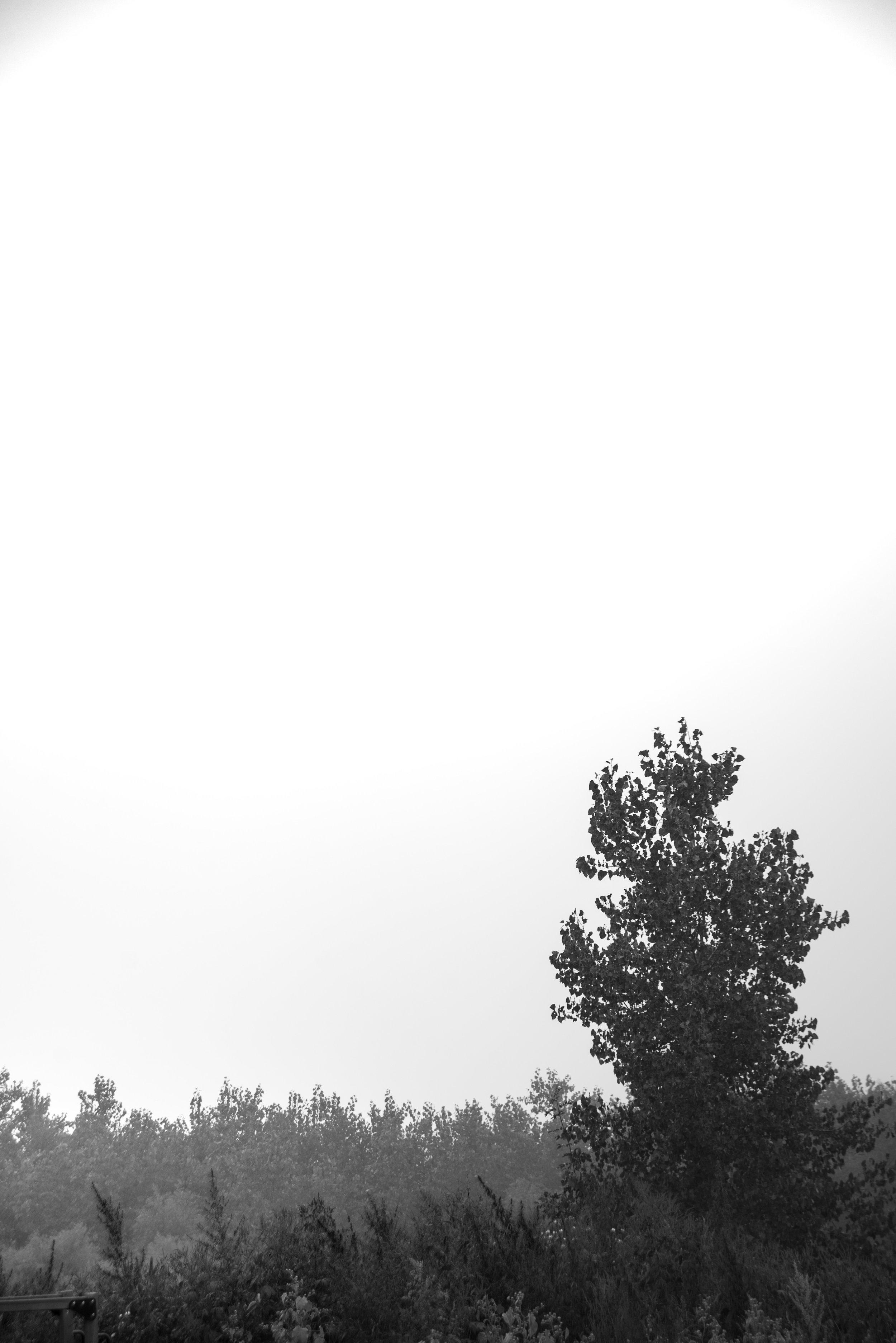 untitled-15.jpg