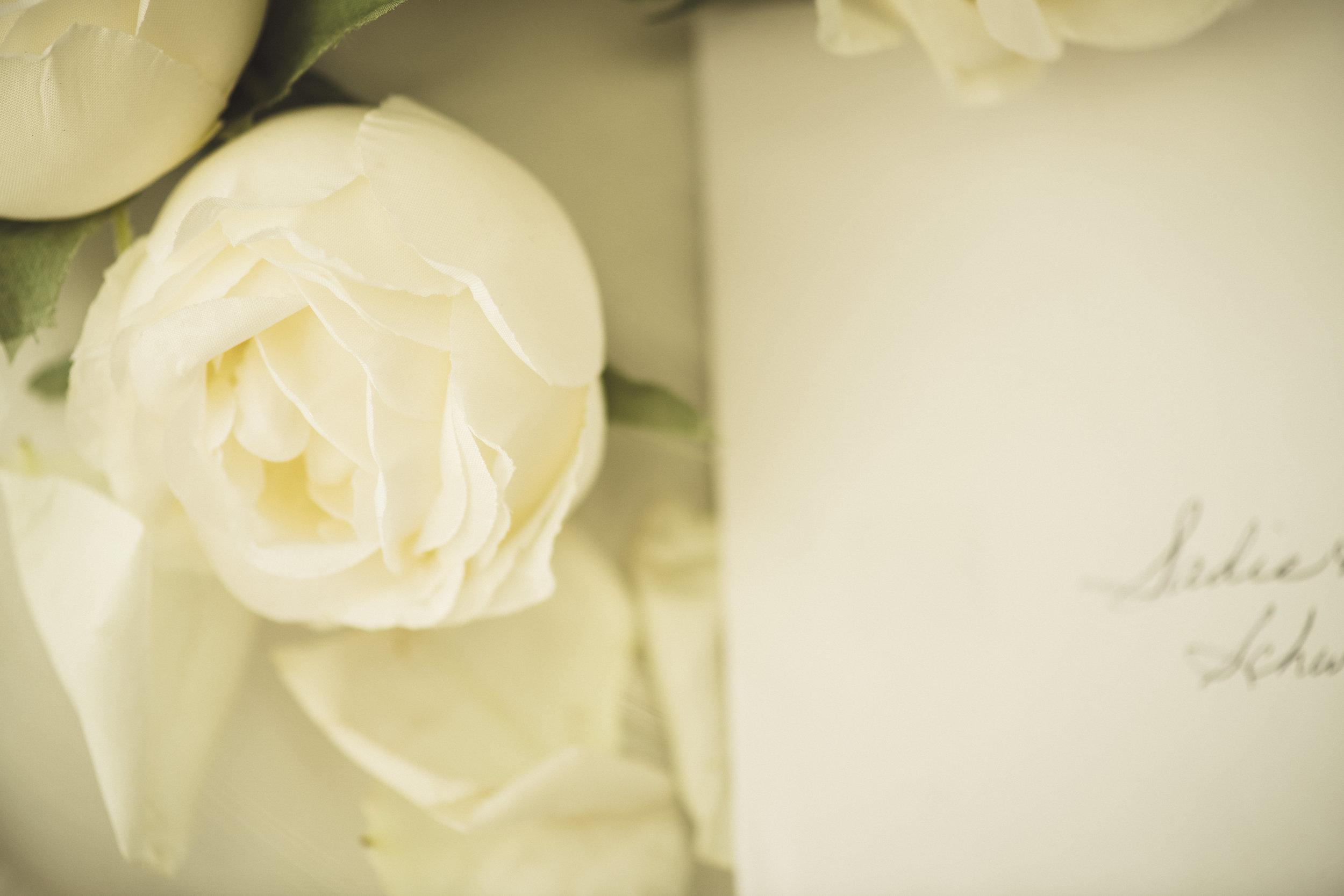 2star_des-moines-wedding-sadie-derek-34.jpg