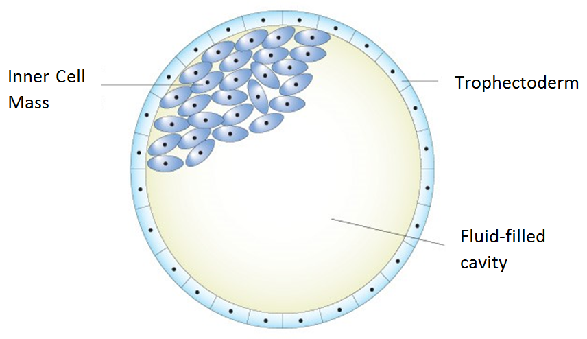 Figure 3                      Source