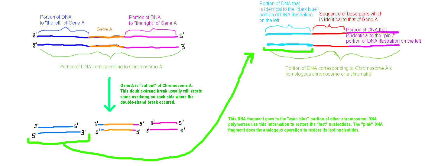 Figure 4 (click to enlarge)