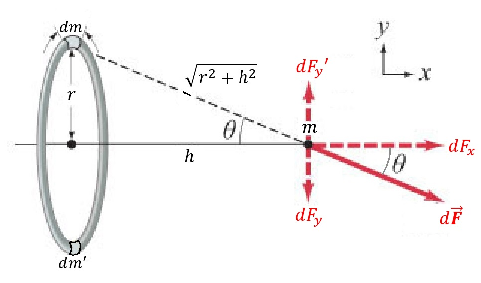 Figure 1: A ring of mass \(M=\int{dm}\) exerts a gravitational force on a particle of mass \(m\) a horizontal distance \(h\) away from the center of the ring. The vertical component of force \(dF_y\) for every mass element \(dm\) in the ring is canceled out by the vertical component of force \(dF'_y\) for another mass element \(dm'\) located on the opposite side of the ring.