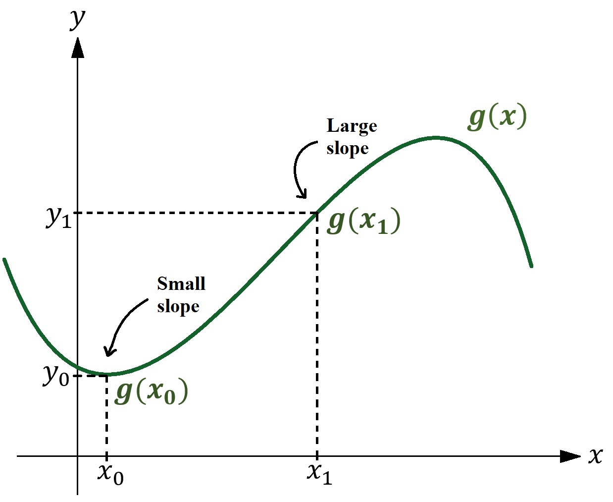 Figure 1: Above, I have graphed some arbitrary function \(g(x)\). At the point \(g(x_0)\), the slope or steepness of the curve is very small (indeed, it is zero) whereas at the point \(g(x_1)\) the slope of the curve is comparitevely large.