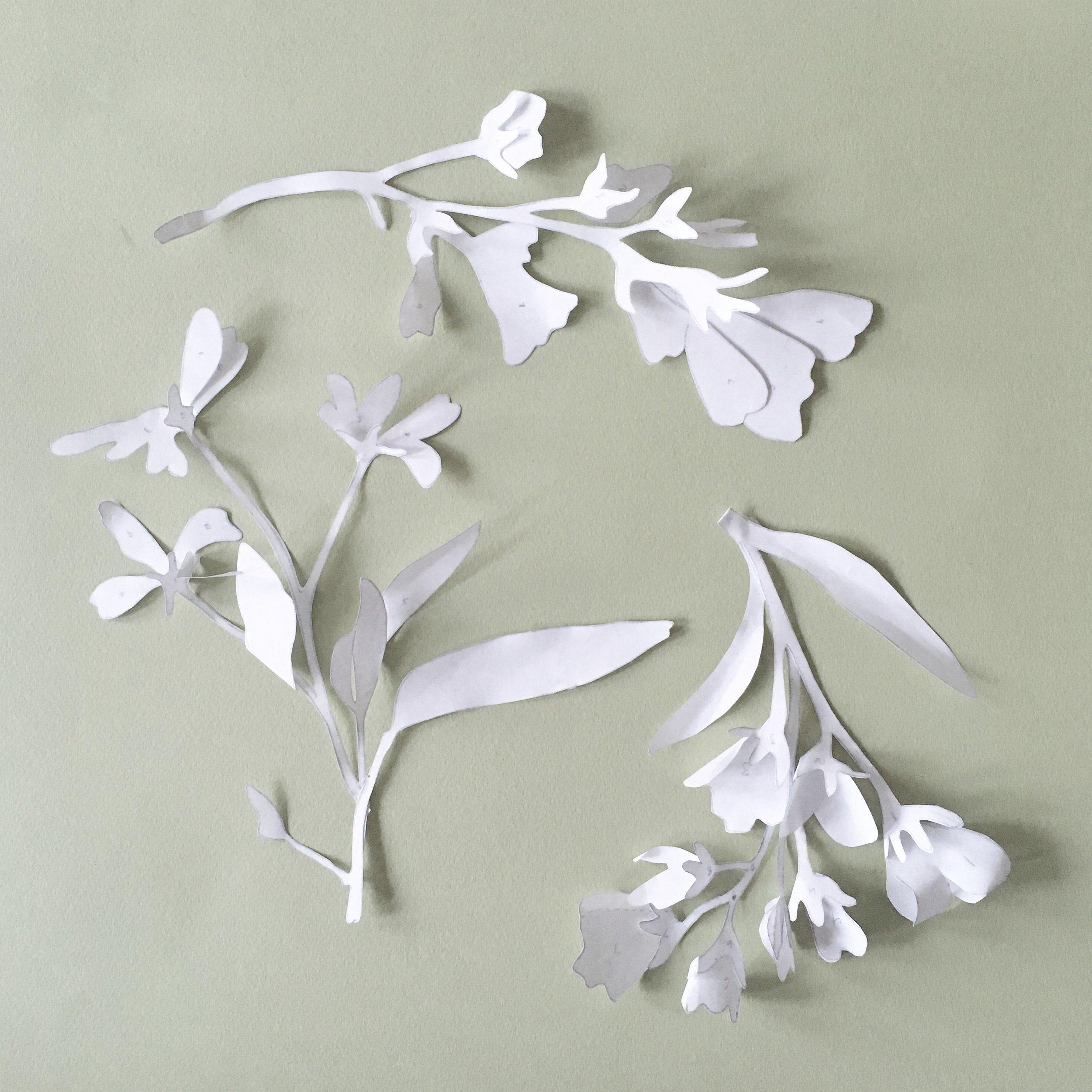 Flower paper models