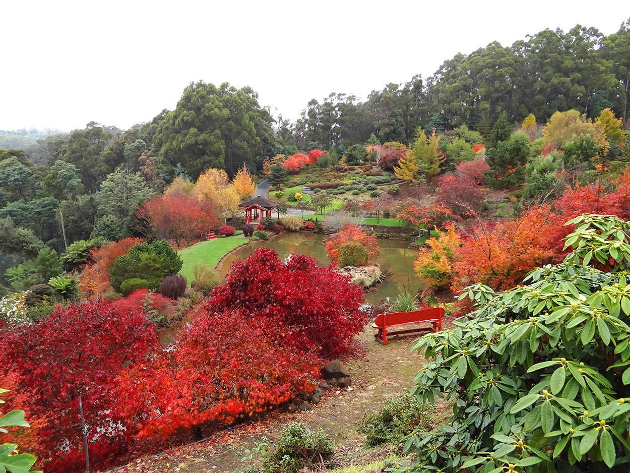 autumn---dsc03091_10322443535_o.jpg