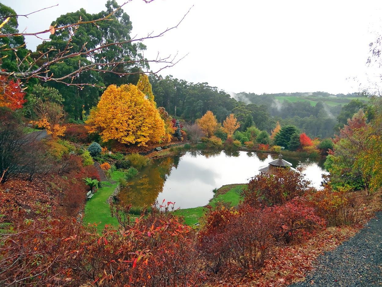autumn---dsc06880_10322781843_o.jpg