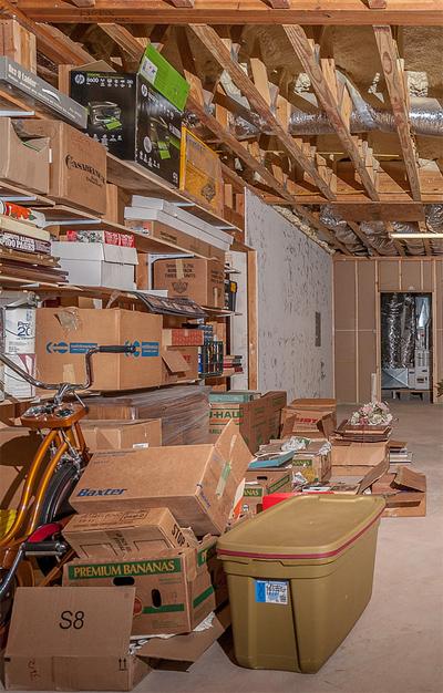 cardboard-boxes-mold.jpg