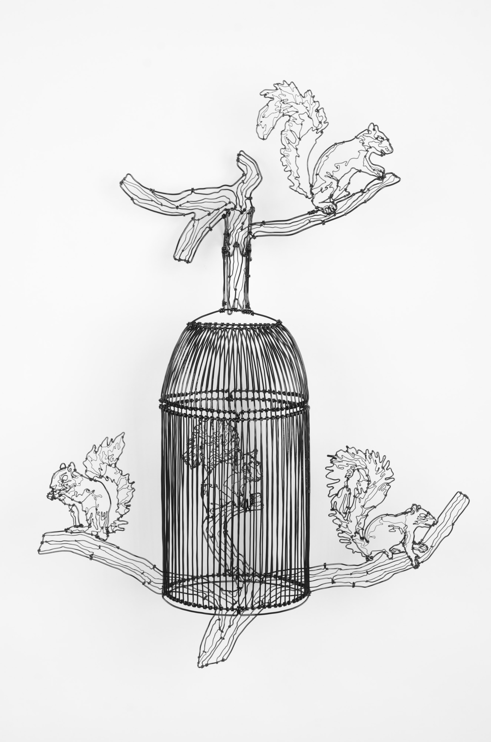 Squirrel Cage 1