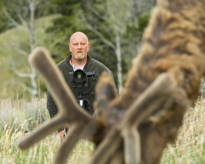 Capturing Elk in The Tetons