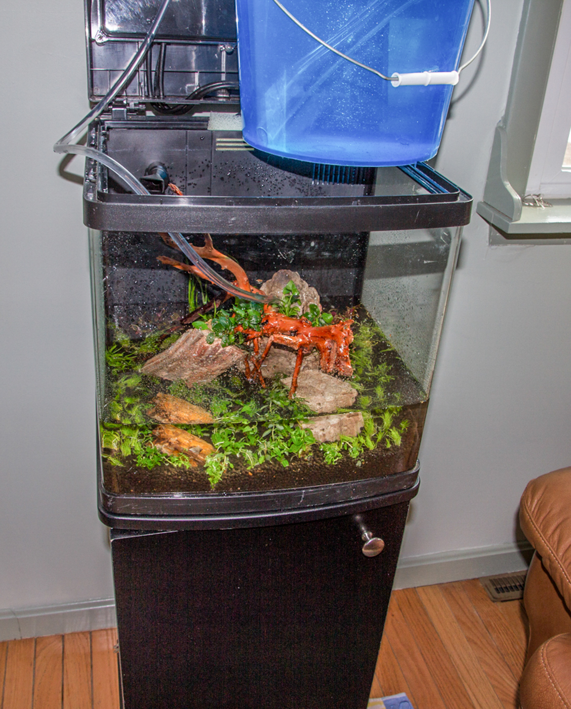 In this 14 gallon Coralife Biocube there was no place to put a dish. You can still fill the tank cleanly, but it means that you have to control the water flow even more carefully. In this case, I balanced a bucket on top of the tank, and siphoned water in through tubing a little larger than airline tubing.