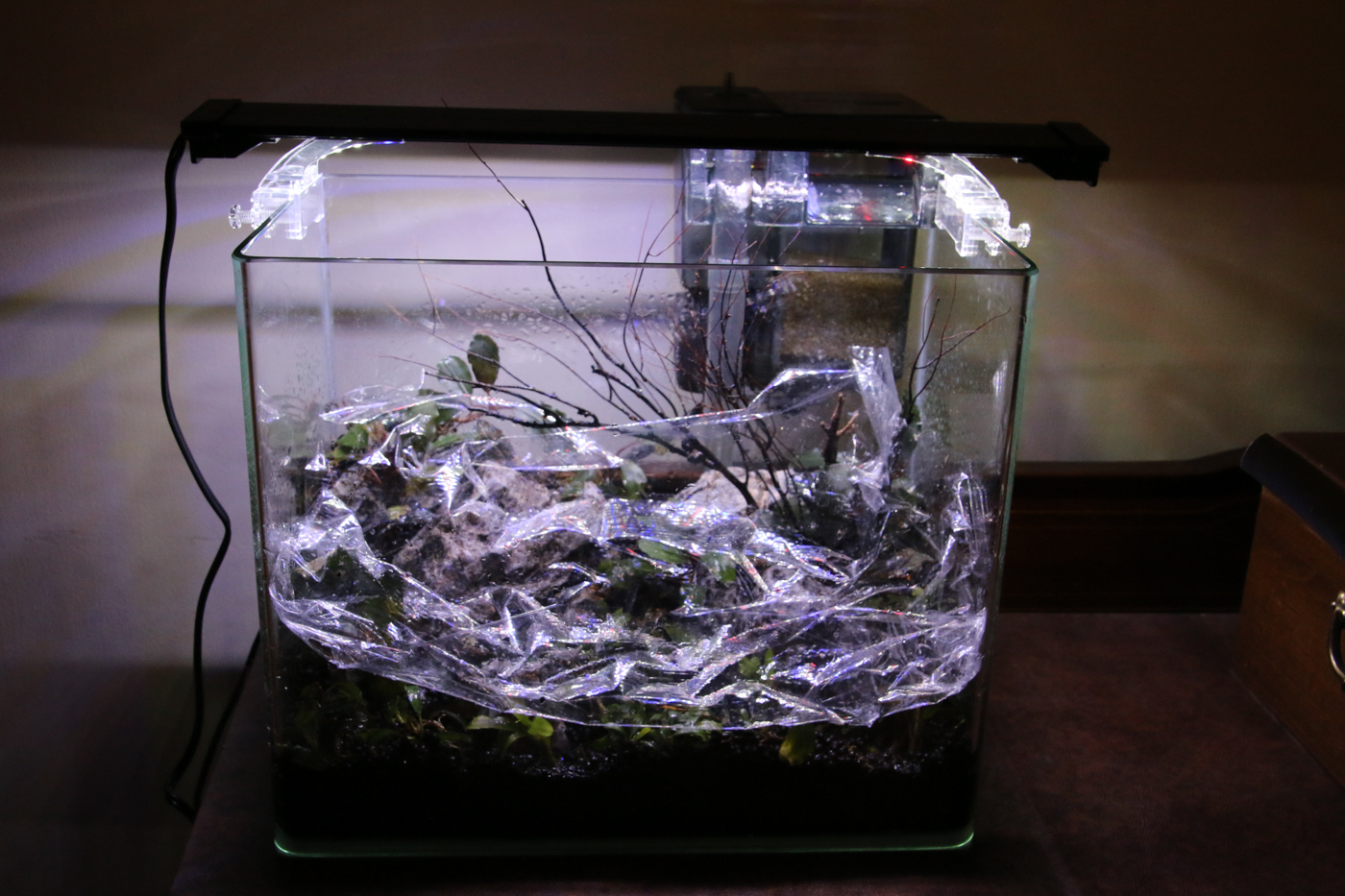 On these tiny tanks, simply lay a sheet of plastic wrap over the entire scape.