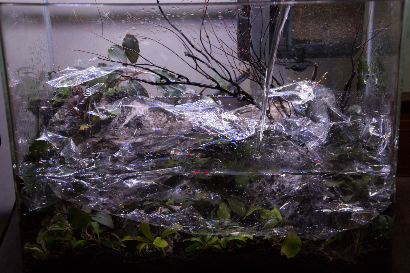 As the water gets deeper, the plastic wrap will float up. No problem! Just keep pouring water directly onto the wrap.
