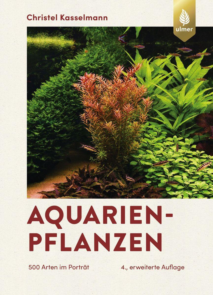 Aquarienpflanzen_NjA4MTM5NA-865x1200.jpg