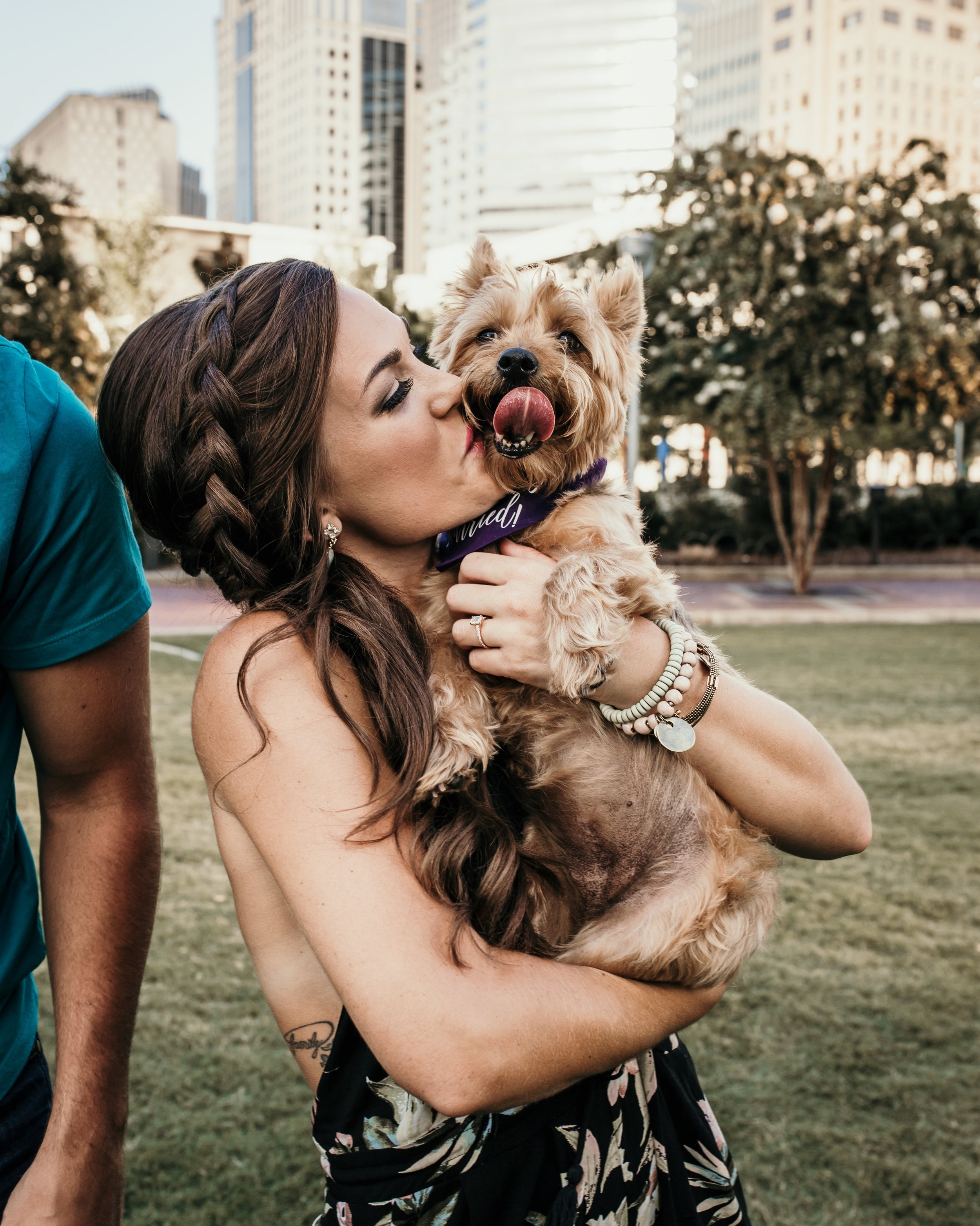 Dog Photography Uptown Charlotte