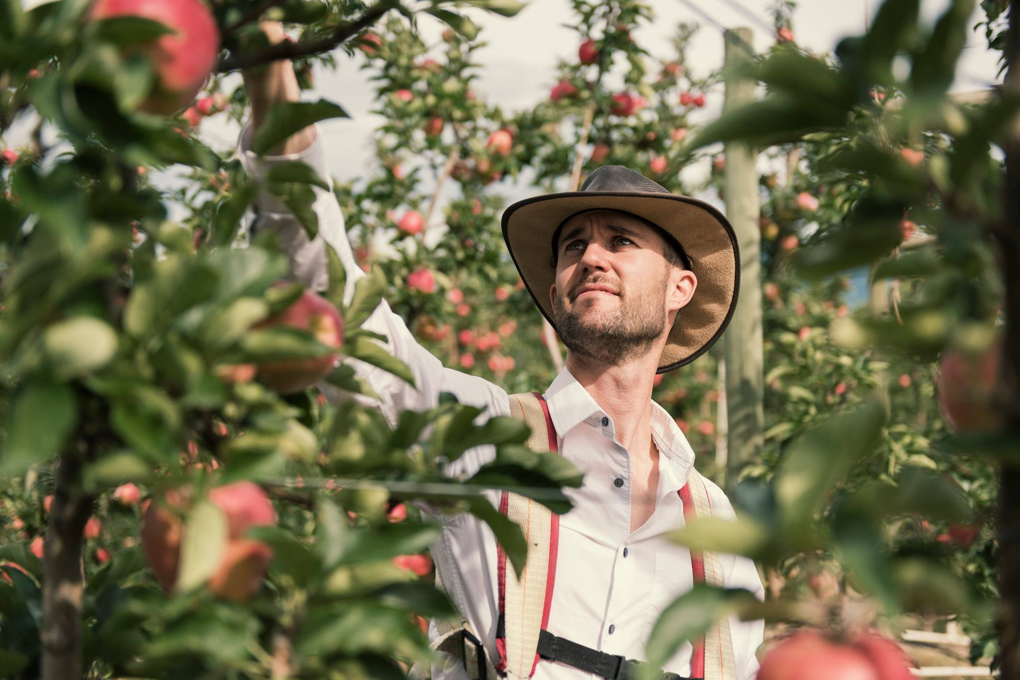 My husband Steve Brown is a hard working orchardist who spends his days at Happy Valley Harvest – our high-density apple orchard near Summerland.