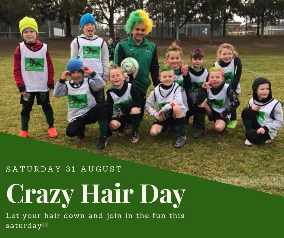 Crazy Hair Day 31 Aug flyer 2.png