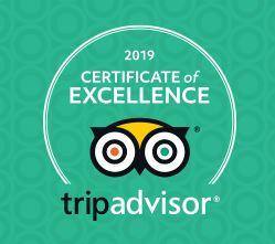 TA 2019 Cert of Excellence.JPG