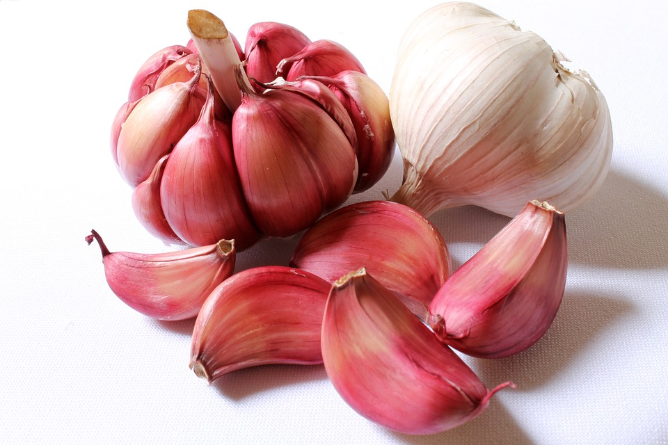 Health benefits of aged garlic