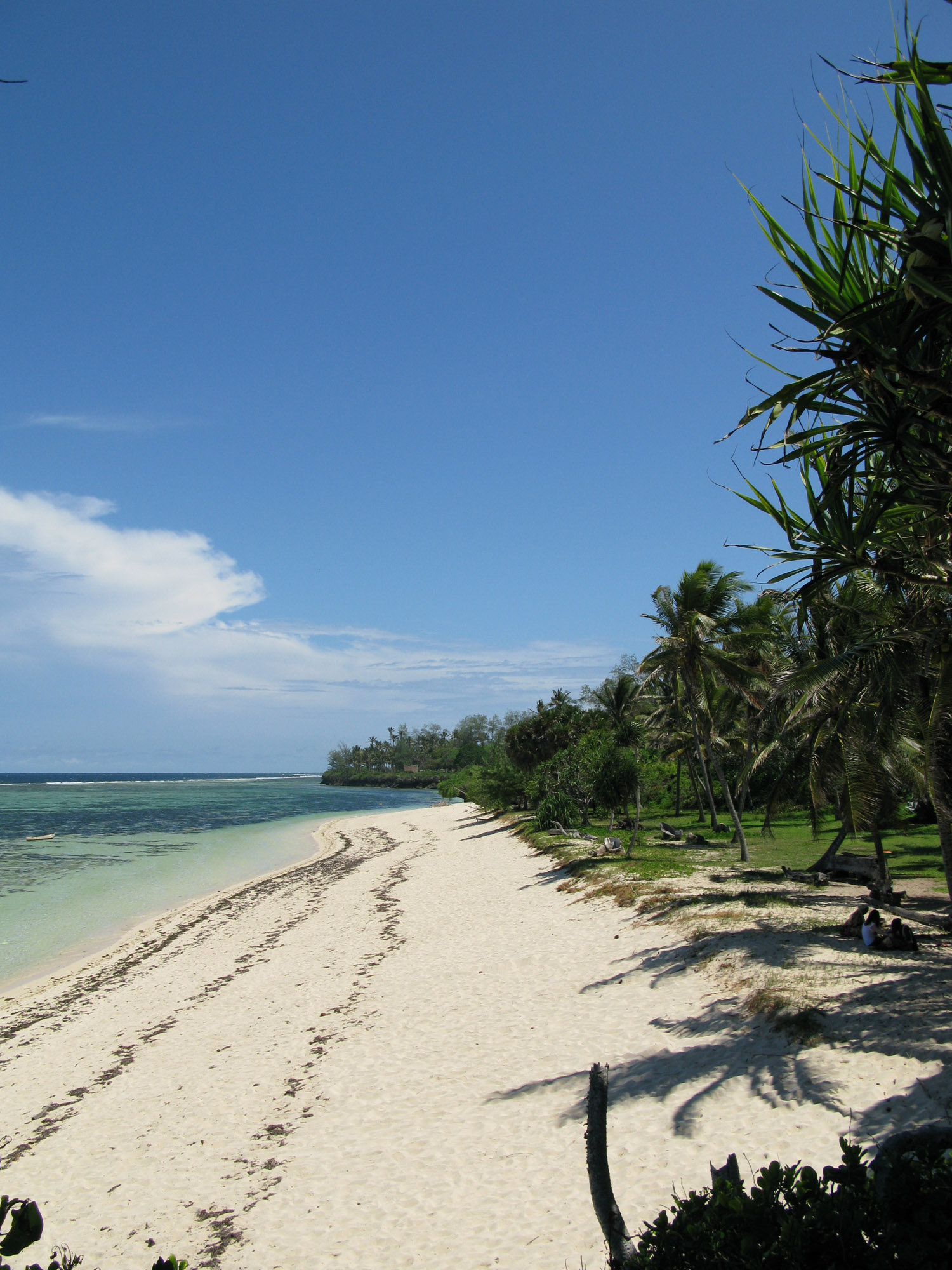The Beach from the Sand Island