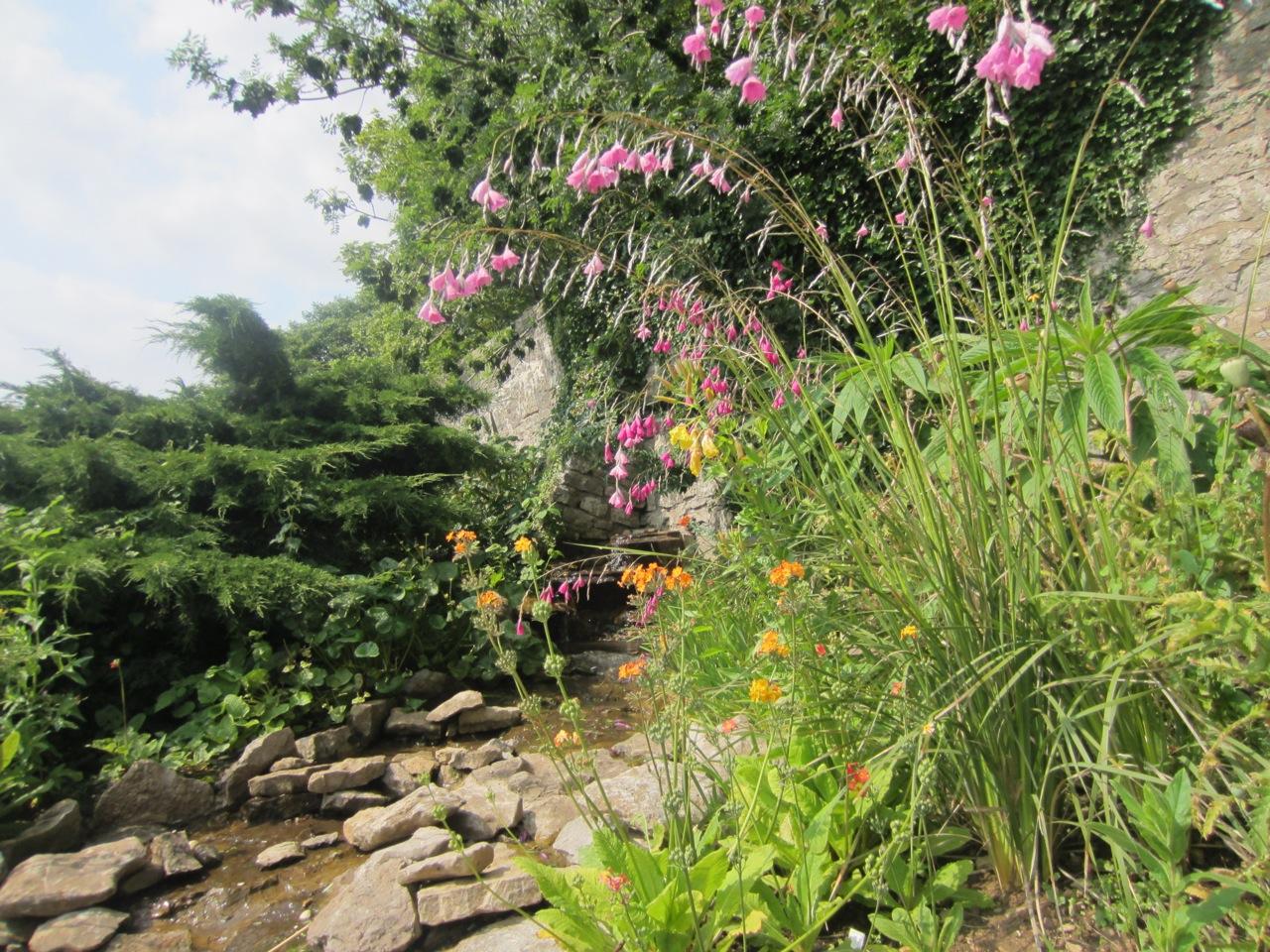 Slade Garden image 1.jpeg