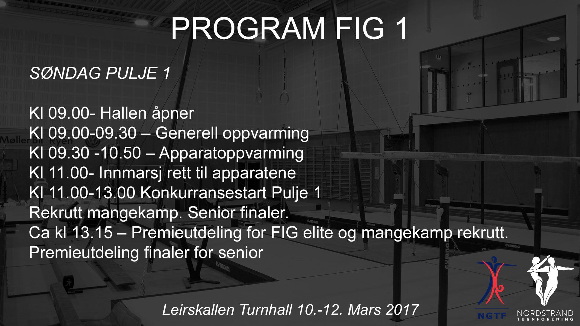 Program-FIG-1-Søndag-Pulje-1.jpg