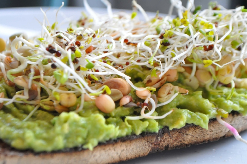 Guacamole and Broccoli Sprouts on toast makes a delicious, healthy, superfood breakfast
