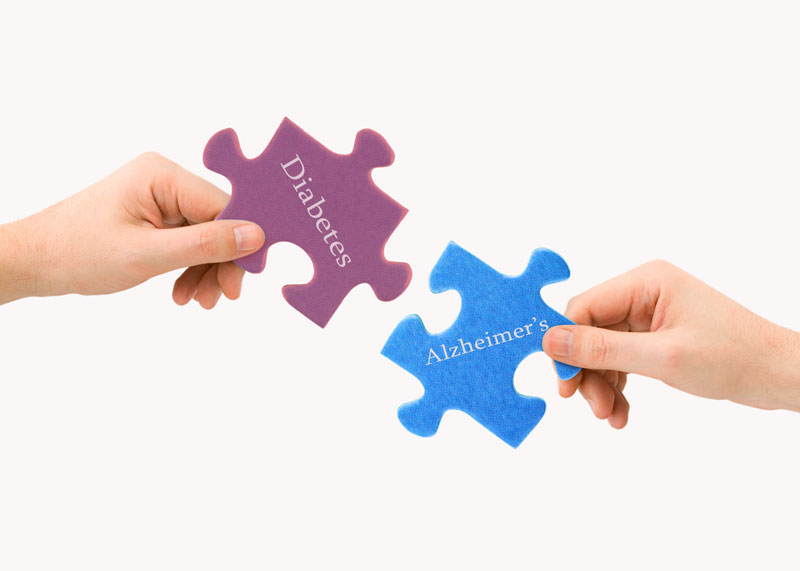 Alzheimer's and Diabetes Puzzle