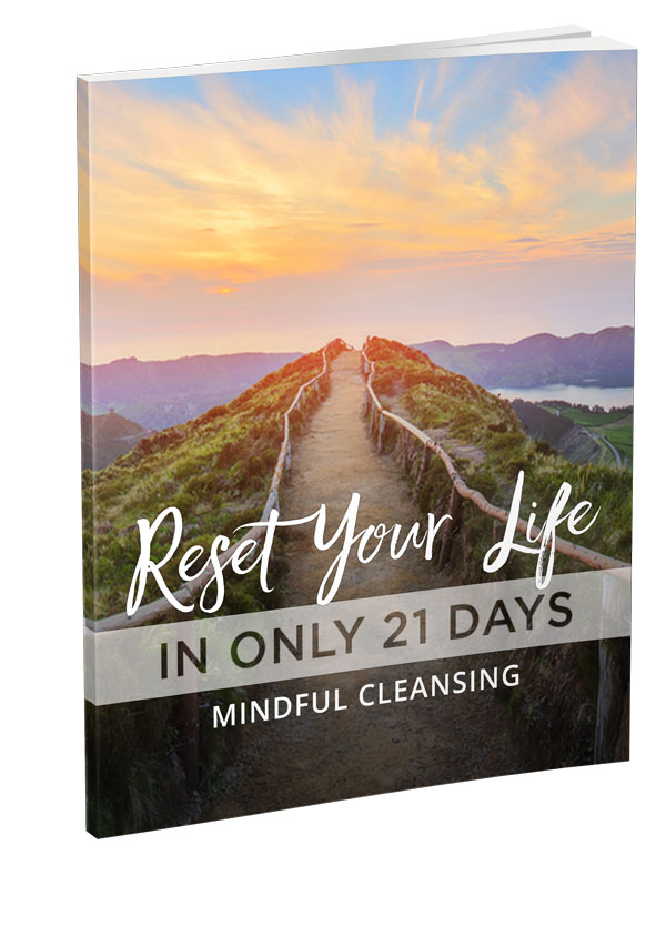 reset your life cleansing guide