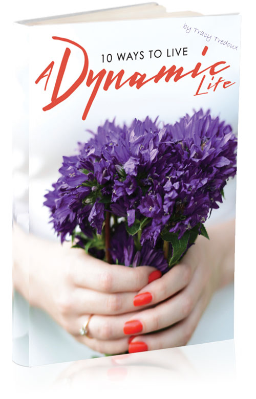 Dynamic-Life-Freebie-3d.jpg