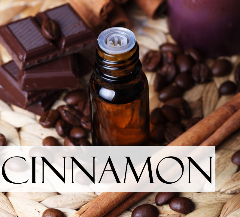 a vial of cinnamon essential oil with some squares of dark chocolate and coffee beans and cinnamon sticks
