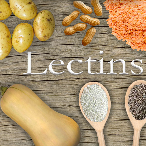 A nutritional therapist's perspective on lectins and why they might be harmful to your health