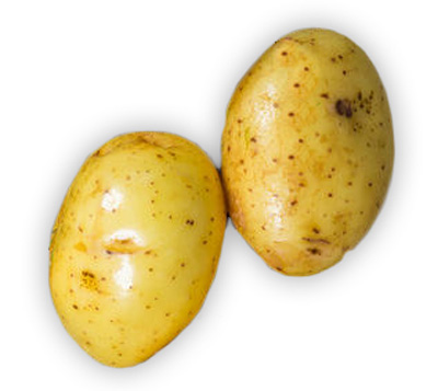 potatoes are high in carbohydrates and so should be avoided when on a ketogenic diet