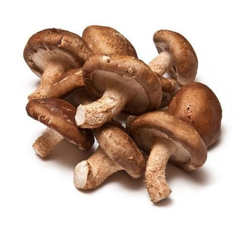 shitake mushrooms.jpg