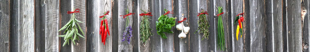a selection of healthy herbs and spices that can help to balance hormones