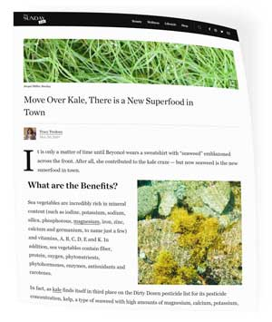 seaweed benefits..