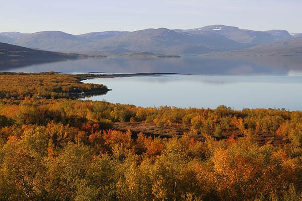 Törnetrask in the Autumn (as viewed from the Abisko Scientific Research Station)