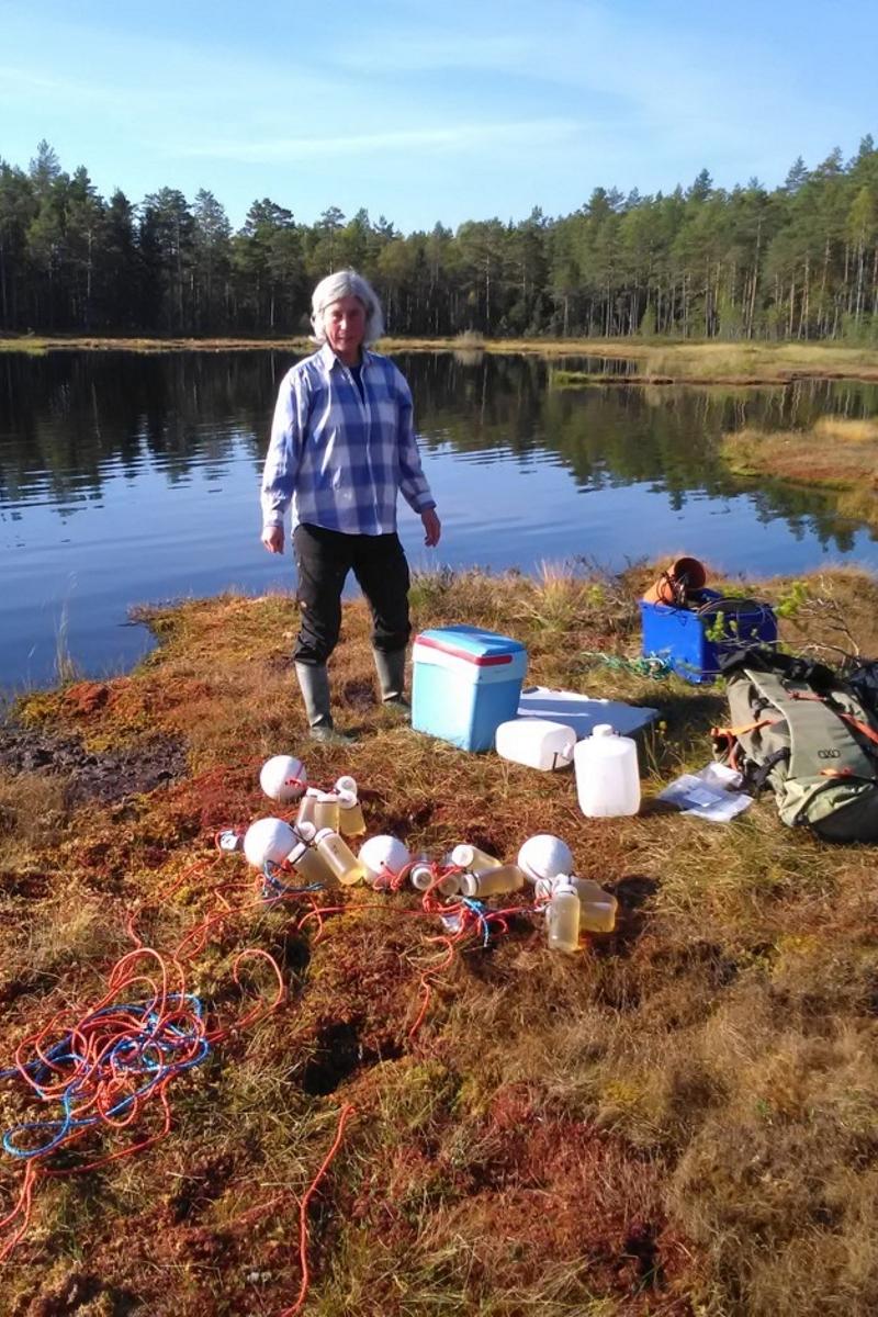 Ann-Kristin Bergström Fieldwork 2.jpg