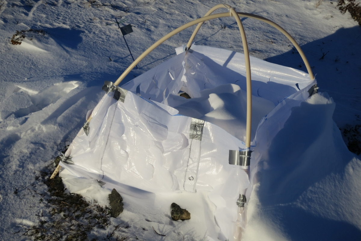 Snow tent Signe Lett 1200x800.jpg