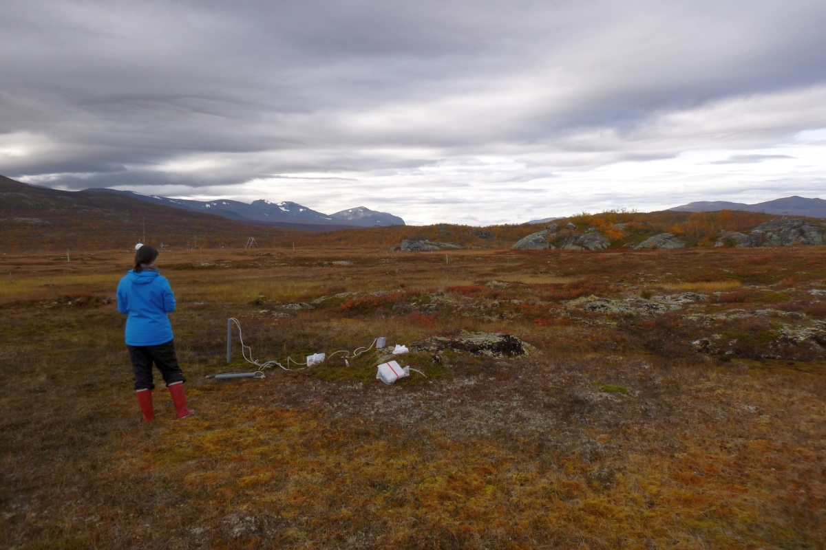 Sampling on the tundra Carolina Olid 1200x800.jpg
